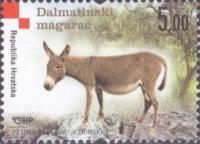 Dalmatian Donkey, MINT, 2007