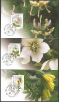 Croatian Flora - Endemic Plants, set of 3 maximum cards, 2008