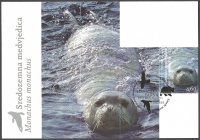 Croatian Fauna - Mediterranean Monk Seal, maximum card, 2011