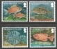 Reef fish, set of 4 stamps, MINT, 2010