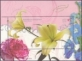 Carnation, Lily, Larkspur, souvenir sheet, MINT, 2008