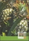 Pineapples, maximum card, 2012