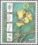 The Flora of BiH: Beck's Violet (Viola beckiana), MINT, 2002