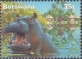 Hippopotamus, stamp, MINT, 2000