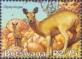 Klipspringer, stamp, MINT, 2003