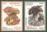 Mushrooms, set of 2 stamps, MINT, 2008