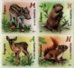 Wild baby animals, set of 4 stamps, MNH, 2021