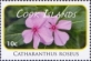 Madagascar periwinkle (Catharanthus roseus), stamp, MINT, 2010