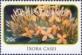 Ixora casei, stamp, MINT, 2010