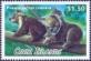 Phascolarctos Cinereus, stamp, MINT, 2013