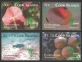 Shanghai Expo 2010 / Environmental Flora / Fauna, set of 4 stamps, MINT, 2010