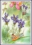 Flower, maximum card, 2013