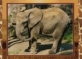 Elephant, postcard without stamp, issue date 2014
