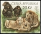 South African Lions and Chimpanzees, stamp, MINT, 2017