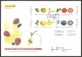 Fruits, FDC, 2010 (Large size envelope)