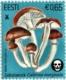 Estonian Mushrooms – The Funeral Bell, stamp, MNH, 2019