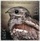 Bird of the Year - The European Nightjar, stamp, MNH, 2019