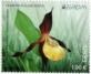 Lady's Slipper, stamp, MNH, 2021
