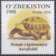 Turtle, stamp, 2016