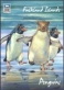 Penguins 4th, postcard without stamp, 2013