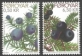 Juniper berries and crowberries, set of 2 stamps, MINT, 2011
