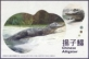 Chinese Alligator, postcard, 2010