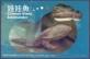 Chinese Giant Salamander, postcard, 2010
