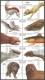 Legendary Creatures from Folktales, souvenir sheet, MINT, 2009