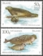 Seals, set of 2 stamps, MINT, 2011