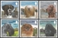The Kennel Club of Jersey: Jersey Champion Dogs, set of 6 stamps, MINT, 2013