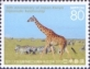 Giraffe and Zebra, stamp, MINT, 2013