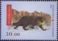 Fauna of the Red Book of Kyrgyzstan - Wild Cat, stamp, MNH, 2014