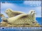 Spotted Seal (Phoca vitulina largha), stamp, MINT, 2006