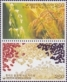 Korean Rice, set of 2 stamps, MINT, 2009