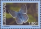 Butterfly (Lysandra coridon), stamp, MINT, 2005