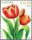 Flowers - Tulips, stamp, MINT, 2014