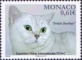 Cat, stamp, MINT, 2014