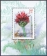 Macedonian Knapweed, souvenir sheet, 2008