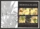 Medicinal Plants, FDC, 2011