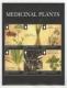 Medicinal Plants, souvenir sheet, MINT, 2011