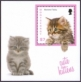 Kittens, souvenir sheet with 1 stamp, MINT, 2013
