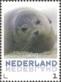 Seal, MINT, 2013