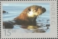 Wildlife in Norway (European otter), MINT, 2010