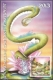 Chinese horoscope - Snake, maximum card, 2013