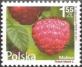 Flowers and Fruits - Raspberry (Rubus idaeus) , MINT, 2011