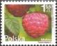 Flowers and Fruits - Raspberry (Rubus idaeus) , MINT, 2011