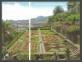 50 Years of the Madeira Botanical Garden (Ornamental garden), souvenir sheet, MINT, 2010