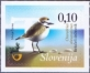 Kentish Plover, self-adhesive stamp, MINT, 2015
