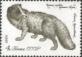Arctic Fox (Vulpes lagopus), stamp, MINT, 1980