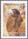 Bactrian Camel (Camelus bactrianus), stamp, MINT, 2009
